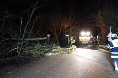 05-2019.12.13.-Baum-droht-auf-Fahrzeug-zu-fallen